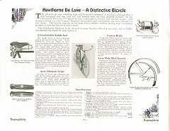 1917 Hawthorne Cat pg2.jpg