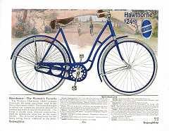 1917 Hawthorne Cat pg5.jpg