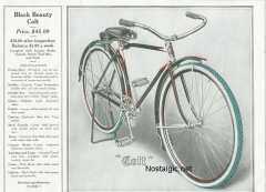 1919 black beauty/Black Beauty pg 10.jpg