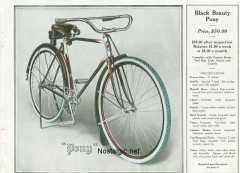 1919 black beauty/Black Beauty pg 17.jpg