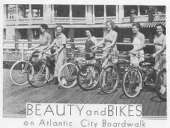 Beauty and Bikes.jpg