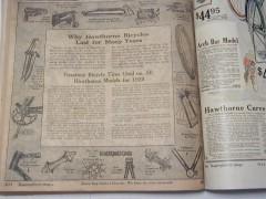 1920 Wards cat 1 dn.JPG