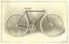 cat - 1899 Featherstone 3.JPG