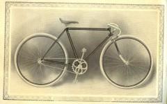 cat - 1899 Featherstone 4.JPG
