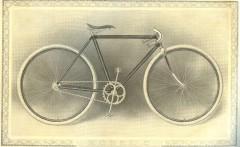 cat - 1899 Featherstone 5.JPG