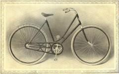 cat - 1899 Featherstone 7.JPG