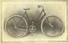 cat - 1899 Featherstone 8.JPG