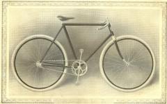 cat - 1899 Featherstone 9.JPG