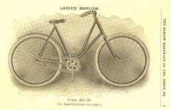 cat - 1901 Barlow 4.JPG