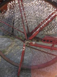 tura63/20599-old_bike_08-13-10_007.jpg