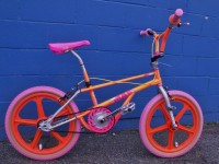1989 Haro Team Master - side view