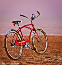 1969 Warrior Dave S Vintage Bicycles